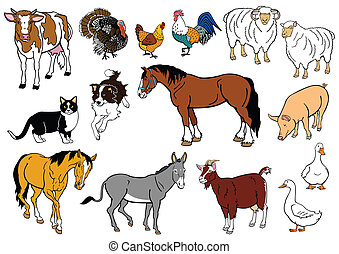 set with farm animals isolated on white background
