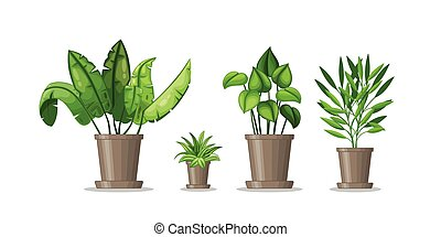 Set with four potted plants