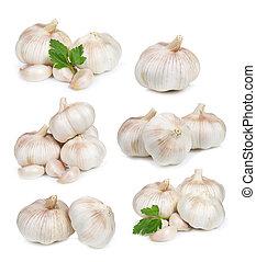 set with garlic on white background