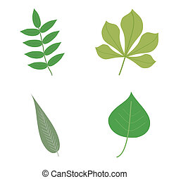 set with leaves on white background