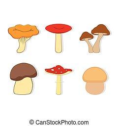 set with mushrooms
