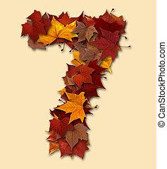 sete, folha, isolado, multicolored, outono, número, composição