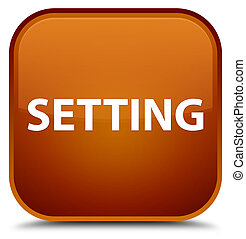 Setting special brown square button