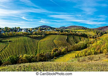 Settlement with Houses at Vineyard in Autumn