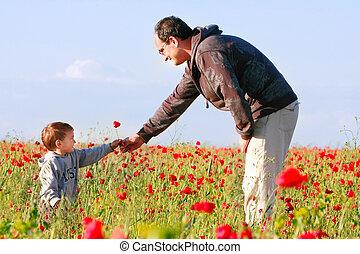 seu, dar, pai, filho, flor, papoula