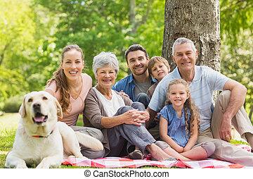 seu, família, estendido, animal estimação, cão