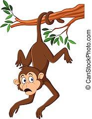 seu, macaco, árvore, rabo, ramo, penduradas, caricatura