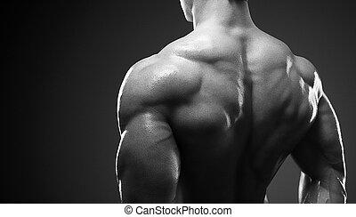 seu, mostrando, costas, muscled, modelo, macho