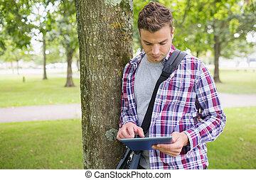 seu, tabuleta, árvore, pc, estudante, inclinar-se, usando, bonito