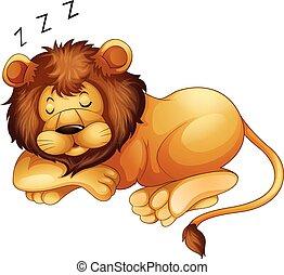 seul, mignon, lion, dormir