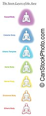 Seven aura bodies chart of a meditating yoga man. Labeled chart - etheric, emotional, mental, astral, celestial and causal layer an template. Different rainbow colored auras. Vector white.