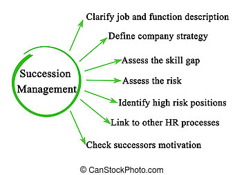 Seven Components of Succession Management