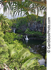Seven Sacred Pools, Hawaii - A view of the seven sacred...
