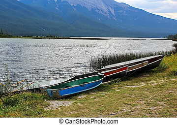 Several aluminum row boats lined up on a shore
