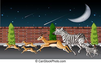 several animals are running on road in night