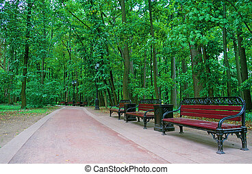 Several benches along a walkway in a summer park