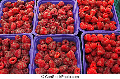 several containers of fresh okanagan valley raspberries.