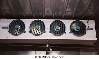 Several fans inside the freezer