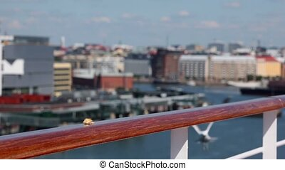 Several gulls fly to get piece of bread on handrail in port...