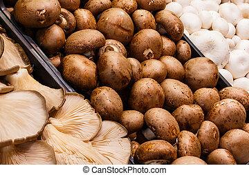 Several mushrooms market