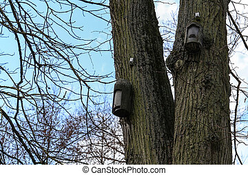 Several old birdhouses hanging in the trees