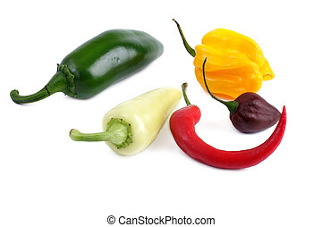 Several peppers on a white background