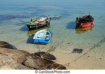 fishing boats on the coast