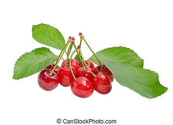 Several sweet cherries and branch with leaves