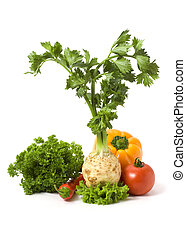 Several vegetables isolated