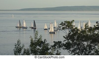 several yachts on the river