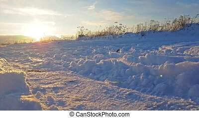 Severe Russian winter snowy landscape, sunset - Winter snowy...