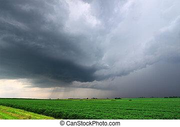 Severe Thunderstorm in Illinois