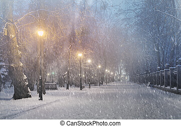 Severe weather in Kiev citizens favorite park, twilight hid...