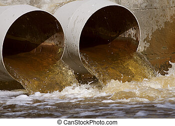Sewer drains