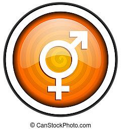 sex orange glossy icon isolated on white background