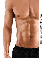 sexy, corpo, di, muscolare, sportivo