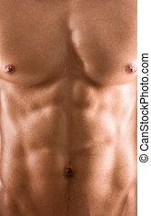 sexy, cuerpo, de, desnudo, muscular, hombre
