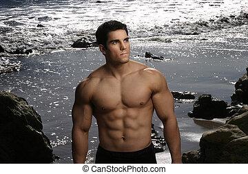 sexy, culturista, en la playa
