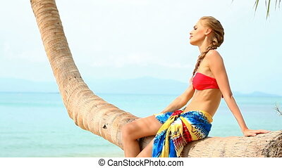 Sexy woman sitting on a palm tree a