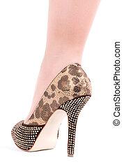 Sexy womanish leg in shoe