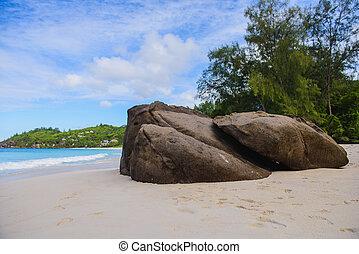 seychelles, não, pessoas., costa, rocha, praia