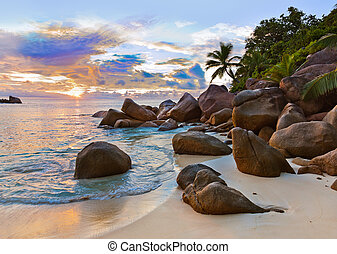 seychelles, playa tropical, en, ocaso