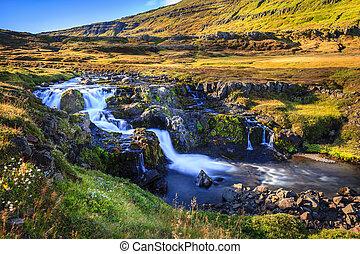 seydisfjordur, valle, fiordo