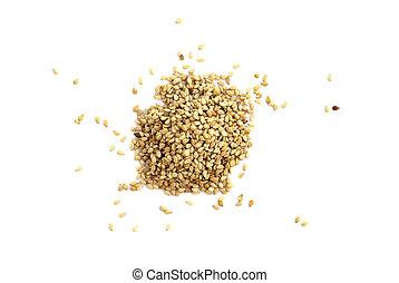 sezamowe nasienie