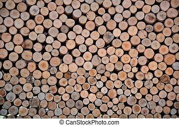 sezione, legno