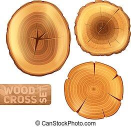 sezione, legno, set, croce