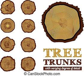 sezione, vettore, tronco, croce, illustrazione