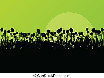 sezonowy, szczegółowy, pojęcie, ogród, tulipany, wektor, ...
