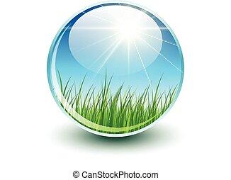 sfera, con, erba verde, dentro
