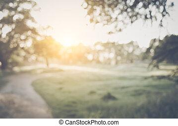 sfocato, natura, fondo, con, instagram, stile, filtro